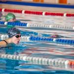 змагання з плавання січень 2011